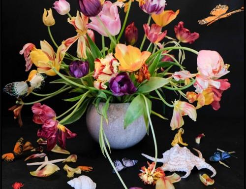Tulpen met Vlinders